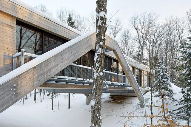 Đây là một tác phẩm do công ty kiến trúc Peru Llama Urban Design thực hiện. Công trình hoàn thành năm 2016 và đã được trao giải nhất tại Giải thưởng Thiết kế gỗ của Ontario năm 2016.