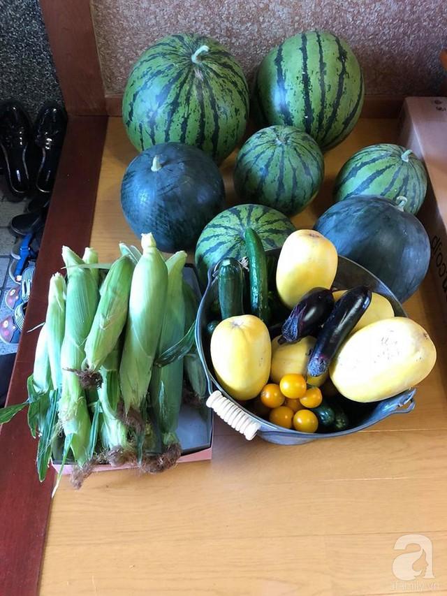 Những loại quả được thu hoạch trong vườn.
