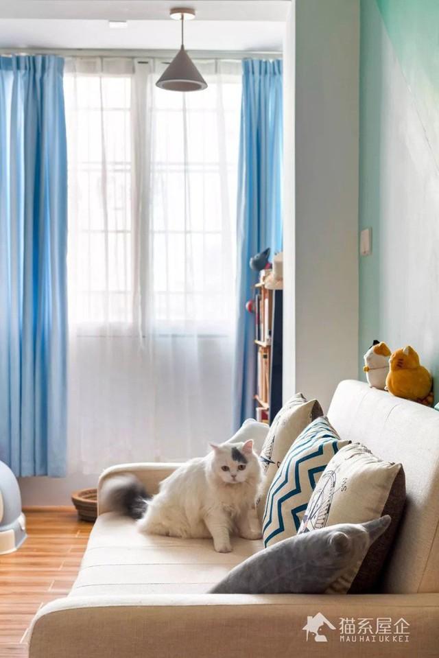 Không gian sinh hoạt chung rộng đẹp hơn khi được cô gái trẻ chọn màu xanh dịu dàng làm màu nhấn.