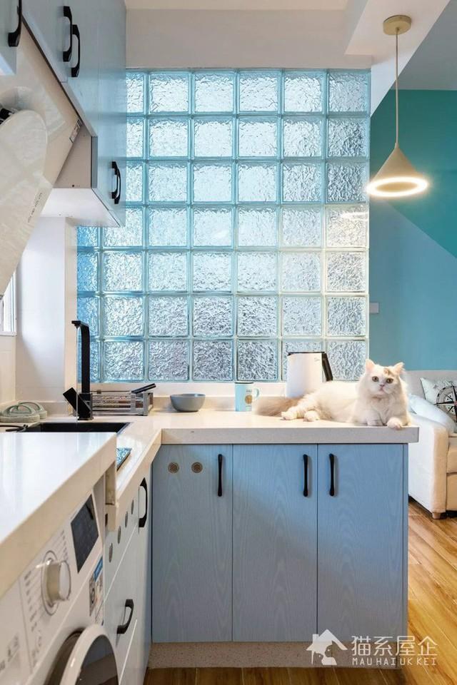 Cô gái yêu nhất là bức tường phân tách giữa phòng bếp và phòng khách với những viên gạch thủy tinh vô cùng ấn tượng.