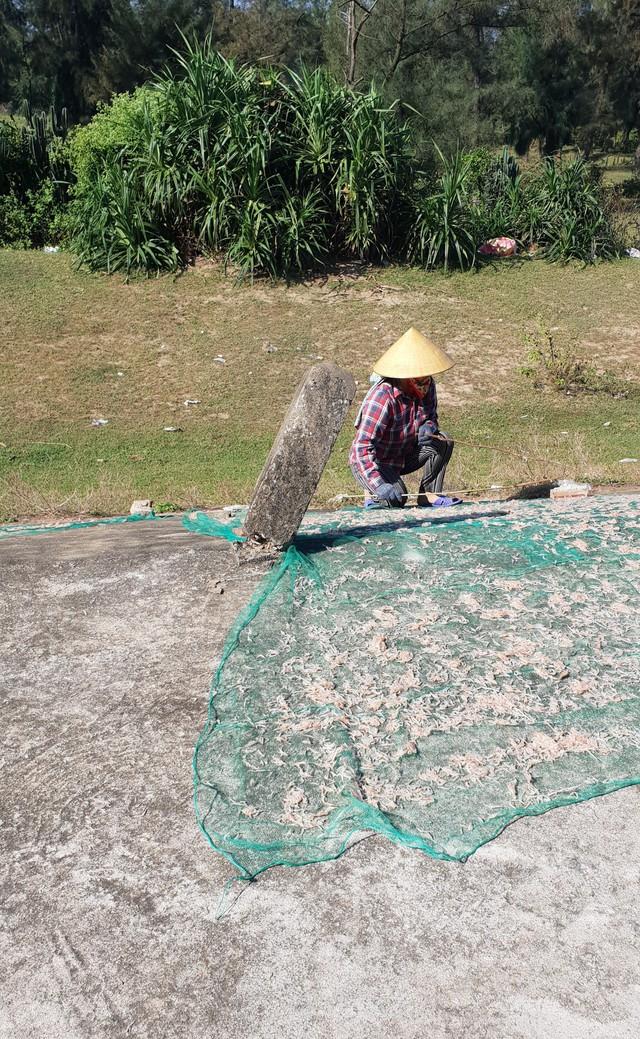 Được biết, tép khô hiện nay có giá bán ra thị trường 150 ngàn/kg, vì vậy ngư dân hầu như tập trung vào phơi tép để bán