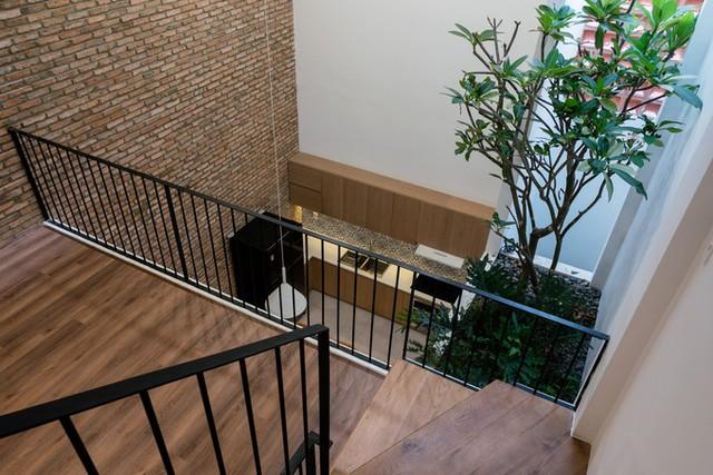 Mái nhà vệ sinh tầng trệt được biến thành một vườn cây nhỏ, giúp mang màu xanh vào trong nhà. Từ khu vực xung quanh thông tầng hay cầu thang đều nhìn thấy vườn cây này.