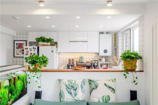 Đằng sau phòng khách là phía Tây nhà bếp. Mặt sau của ghế sofa tạo ra bức tường thấp để phân biệt không gian. Từ phòng khách đến nhà bếp phương Tây tạo cảm giác về những lớp hình ảnh độc đáo. Mặ bàn có thể sử dụng đơn giản như ăn nhẹ, hoặc trang trí…
