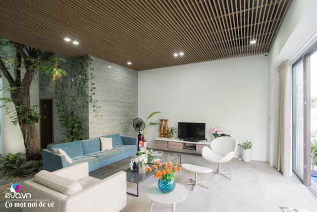 Khu vực phòng khách được xây mới tràn ngập ánh sáng và hòa với thiên nhiên.