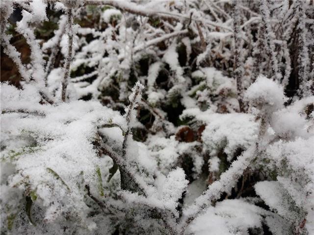 Sáng mai, không khí lạnh tăng cường tiếp tục dồn xuống miền Bắc