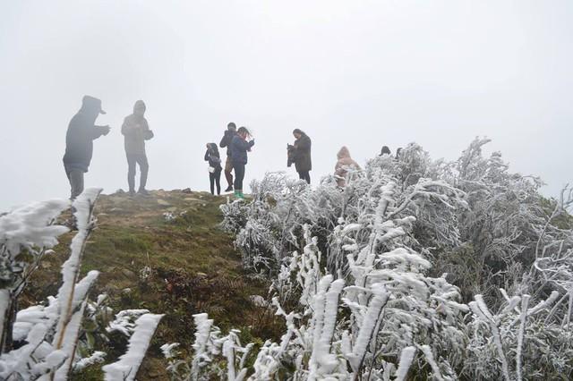Nước đóng băng trên đỉnh Mẫu Sơn (Lạng Sơn). Ảnh:PV