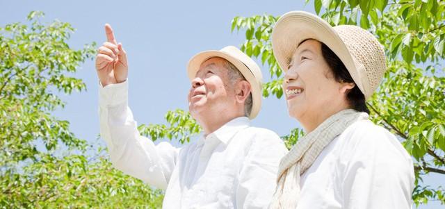 Khi bạn khỏe, tuổi già chẳng thể ngăn bạn tận hưởng cuộc sống này.