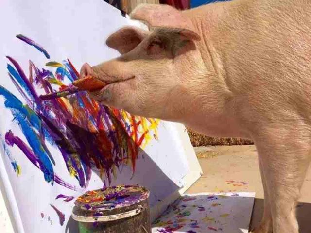 Choáng với bức tranh trị giá ngàn đô của 1 nàng... lợn