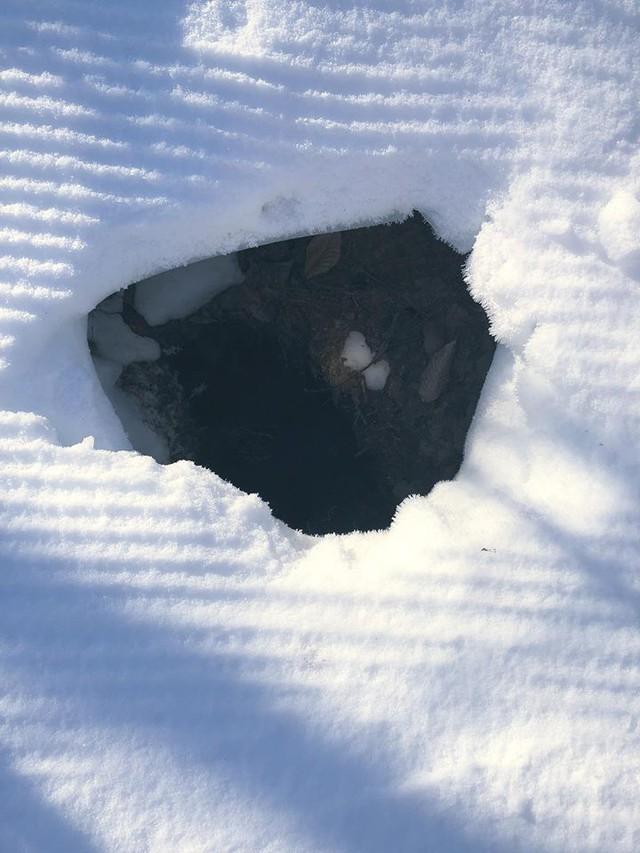 Thấy hố tuyết kỳ lạ, phát hiện điều thú vị bên trong