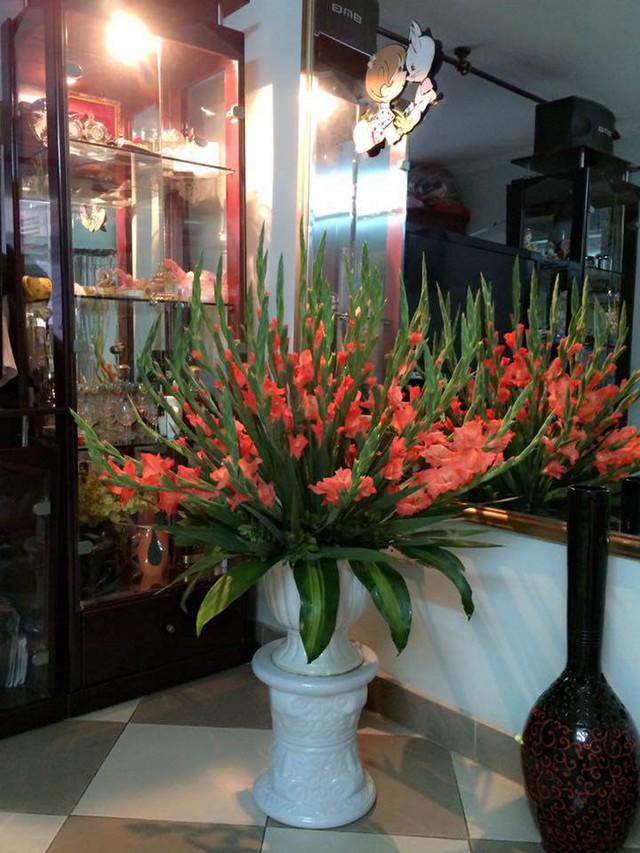 Nên để hoa ở chỗ mát để hoa tươi lâu hơn.