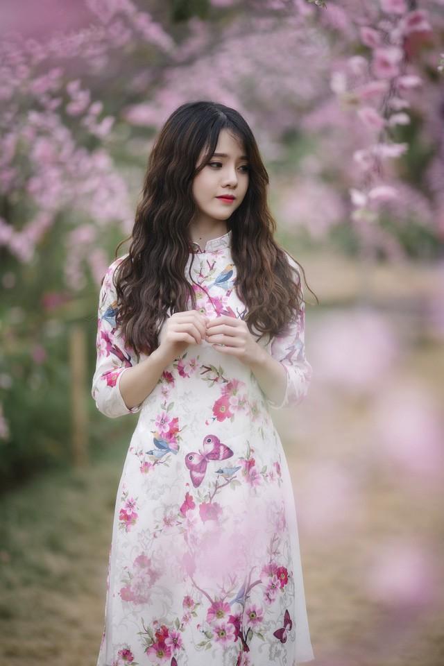 Tăng Thị Ngọc Tuyết hiện đang là sinh viên năm hai ngành Kinh tế đối ngoại trường Đại học Ngoại thương Hà Nội. Khi Tết đang đến rất gần cô bạn này mong muốn lưu giữ lại những khoảnh khắc ngọt ngào của tuổi trẻ nên đã quyết định chụp bộ ảnh này với trang phục áo dài thướt tha.