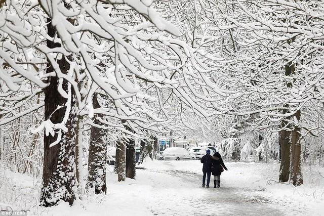 Tuy nhiên do tuyết rơi dày đặc, nhiều người lái xe đường dài đã buộc phải để lại xe giữa trời tuyết và vào trú trong các điểm dừng chân khác nhau được dựng lên trong thành phố.