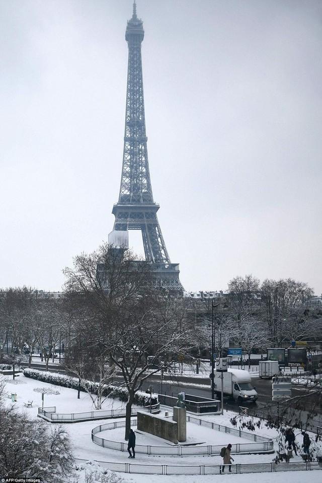 Nhiều tuyến xe bus nội đô Paris đã phải hủy chạy vào ngày hôm nay.
