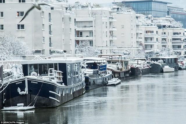 Bên sông Seine, tình trạng giao thông cũng khoogn khá khẩm hơn là mấy, nhưng sông Seine vào thời điểm này thì đẹp đến cực phẩm.