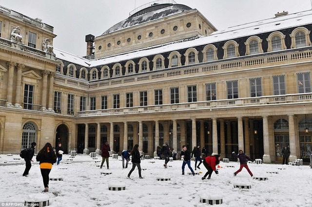 Trẻ em đã được nghỉ học vào ngày hôm nay vì lý do thời tiết, và dĩ nhiên chẳng cô cậu nào chịu ở trong nhà vào ngày tuyết rơi này cả.