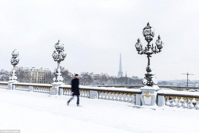 Khách du lịch ở Paris đang bị rơi vào cảnh vui buồn lẫn lộn vì giao thông kẹt cứng đã buộc họ phải ở lại Paris thêm một thời gian, nhưng khung cảnh này làm cho chẳng ai có thể bực mình được.