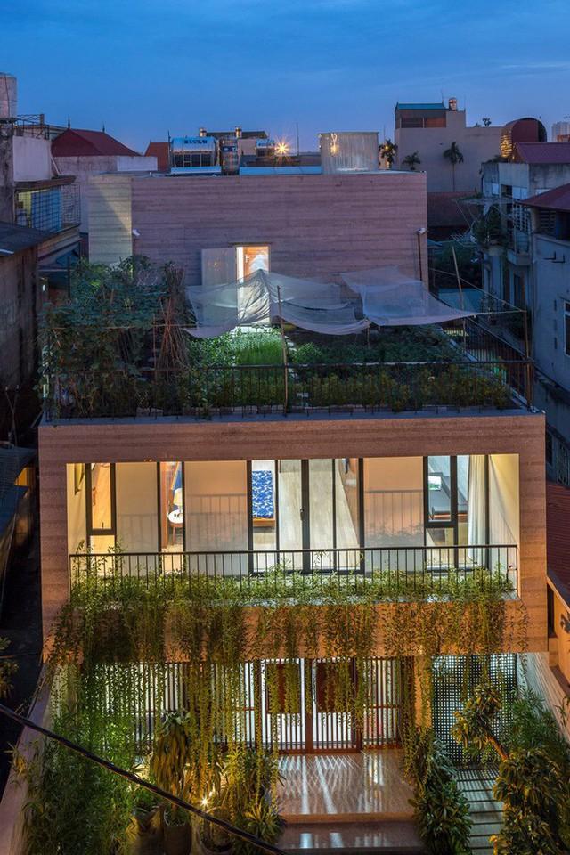 Ngôi nhà với rất nhiều cây xanh được bố trí ở khắp nơi trong nhà.