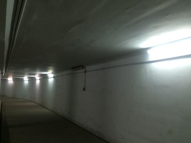 Đường hầm tối, xập xệ gây cảm giác ghê rợn (Ảnh chụp 9/3/2018)