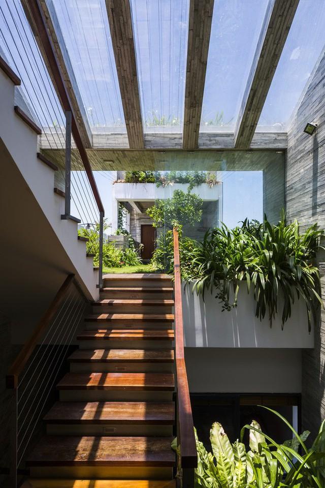 Lối lên khu vườn trên sân thượng với mai che trong suốt.