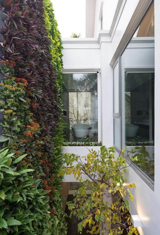 Cửa sổ trên tầng 2 là phòng tắm cũng nhìn thẳng ra khu vườn nhỏ trần ngập cây xanh.