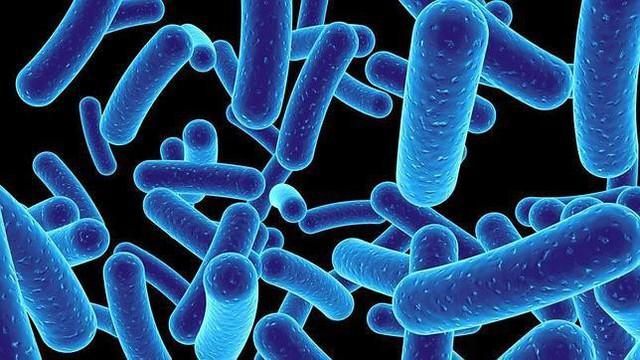 Đặc biệt, bổ sung đầy đủ lợi khuẩn Bifido sẽ cân bằng tỷ lệ vàng (85% lợi khuẩn – 15% hại khuẩn) giúp tiêu hóa ổn định và giảm dần các rối loạn tiêu hóa triền miên.