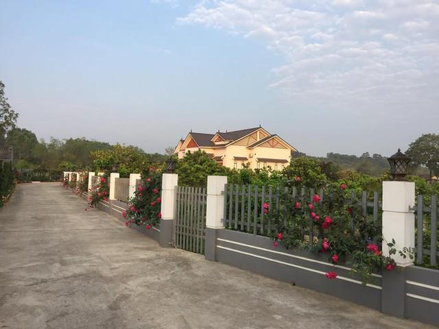 """Ngôi nhà có hoa hồng trải dài từ cổng vào tận nhà. Hai bên hàng rào là những gốc hồng tường vi leo màu đỏ có mùi thơm ngọt. Quanh nhà và hiên sân, những bụi hồng đào cổ dìu dịu màu phấn hồng lãng mạn và tỏa hương ngào ngạt. Còn lại toàn bộ từ sân trở là trồng hồng cổ Sapa và một số giống hồng khác"""", chị Quyên mô tả."""