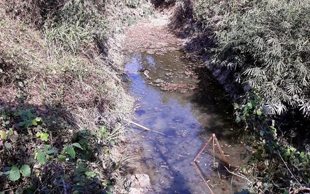 Hồ nước nơi phát hiện thi thể ông Hùng. Ảnh: Triệu Thanh