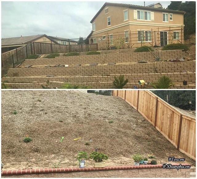 Hình ảnh trước và sau khi cải tạo vùng đồi trống đầy gỗ dăm.