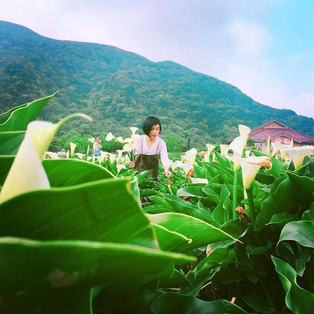 Xin việc 60 lần bị từ chối, miệt mài làm đến mức bị sỏi thận, cô gái Việt ở Đài Loan nay đã thành cô chủ nhỏ kiếm 50 triệu/tháng