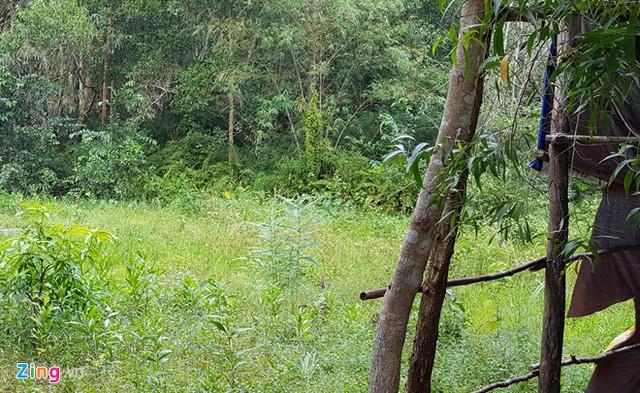 Bán đất rừng như mớ rau, rổ cá trong cơn sốt giá ở Phú Quốc