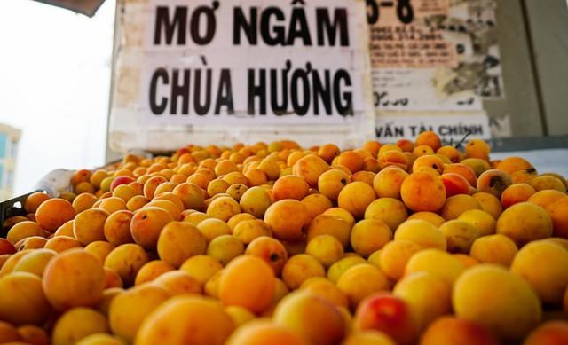 Theo người bán, những trái mơ cũng được nhập từ Hà Nội vào, có giá bán trung bình 40.000 đồng một kg. Mơ thì có vào tháng 3 dương lịch và chỉ kéo dài trong khoảng một tháng. Người mua thường mua vài ký về để ngâm lấy nước, một người bán cho hay.