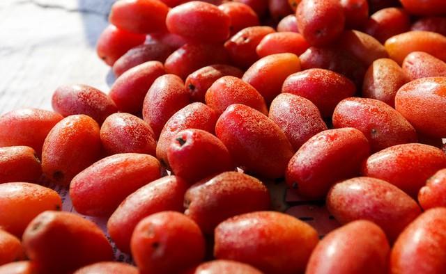 Giá nhót chín bán lẻ thường dao động từ 100.000 đến 120.000 một kg. Trái này mới có nhiều ở TP HCM từ hai năm nay, nhiều người mua vì thấy lạ, họ nhìn từ xa cứ tưởng trái cà chua, một người bán cho biết.
