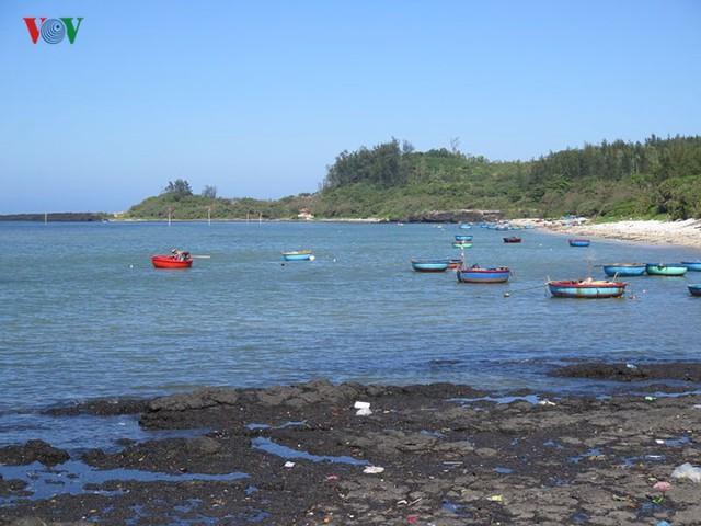 Khu vực ven biển Quảng Ngãi có tiềm năng phát triển du lịch dịch vụ