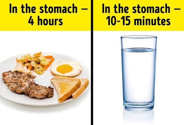 Hóa ra uống nước trong khi ăn lại không quá tồi tệ như chúng ta vẫn tưởng