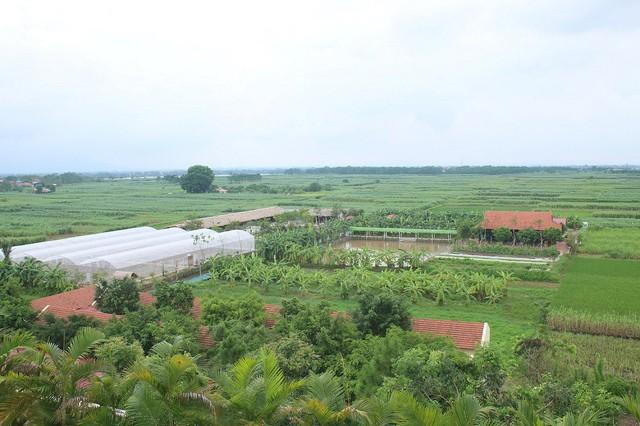 Hé lộ những loài chim nhiệt đới rực rỡ trong vườn chim FLC Vĩnh Phúc