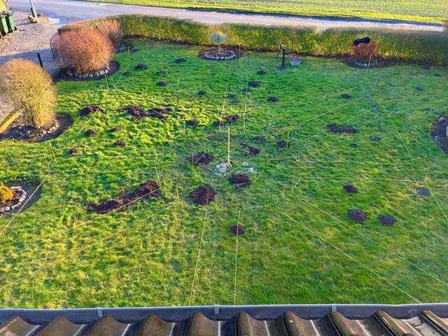 Thảm cỏ xanh phía sau nhà được lên kế hoạch thiết kế ấn tượng