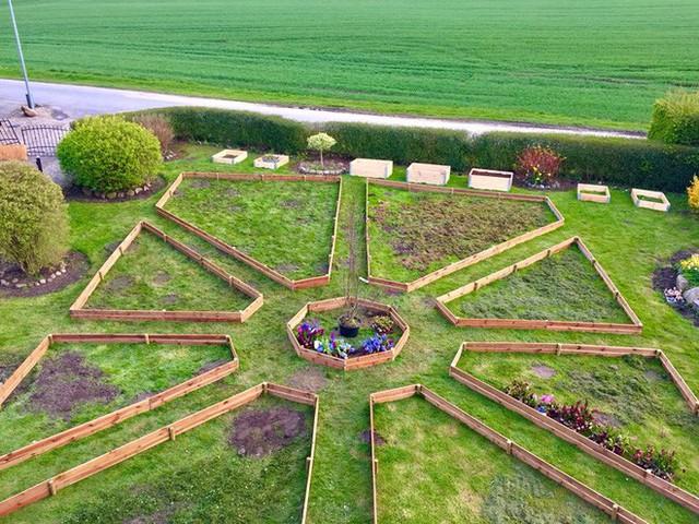 Tạo các khung gỗ trồng rau khá ấn tượng