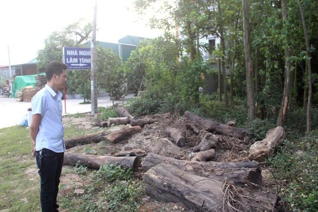 Khu vực gia đình anh Mạnh để gỗ bị kẻ xấu đốt hại trước đây. Ảnh: Đ.Tùy