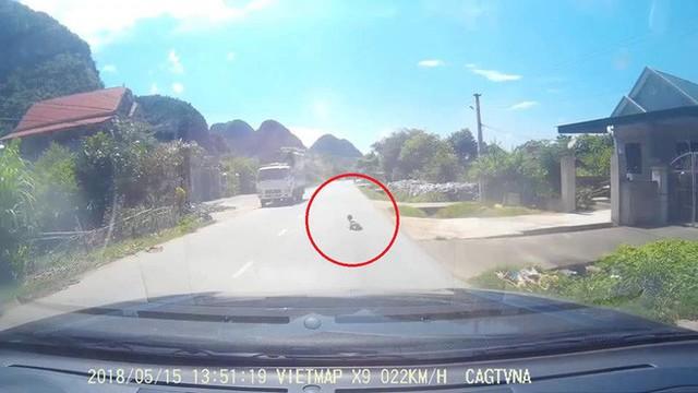 Clip: Thót tim trước cảnh em bé bò ngang đường quốc lộ giữa trưa nắng nóng - Ảnh 2.
