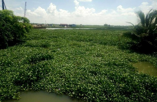 Mặc dù đã có chỉ đạo từ UBND huyện Kiến Thụy, tuy nhiên hiện tại biển báo nguy hiểm vẫn chưa được cắm. Ảnh: S.M