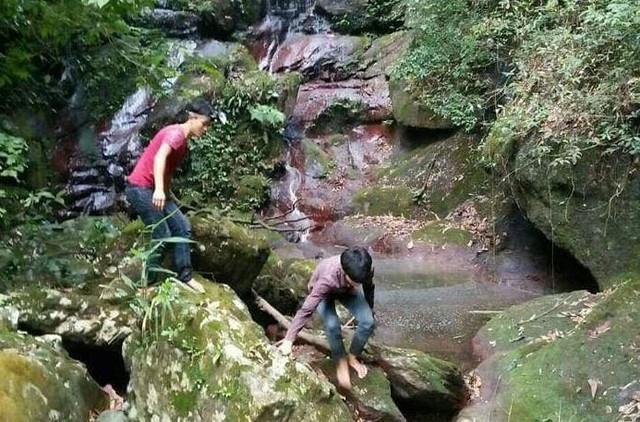 Khu vực Bản Danh, xã Hà Lâu, huyện Tiên Yên - nơi phát hiện ra hang lạ. Ảnh: T.Chi