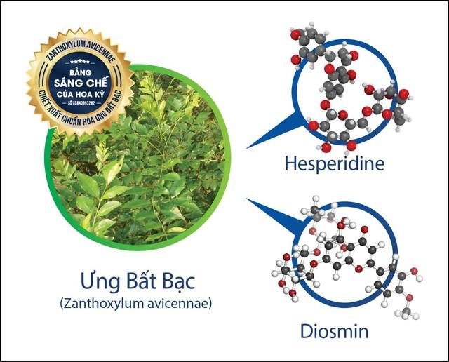Ưng Bất Bạc chứa Hesperidine và Diosmin giúp phục hồi và tái tạo tế bào gan