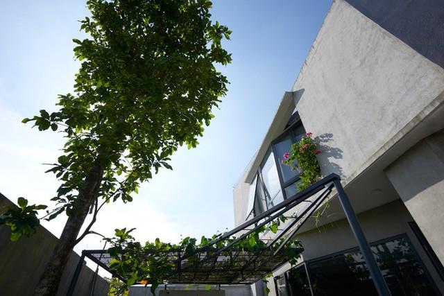 Các loại vật liệu hoàn thiện mộc mạc cùng cây xanh khiến ngôi nhà tiện nghi ở Sài Gòn đem lại cảm giác thân quen với người chủ lớn lên ở vùng quê.
