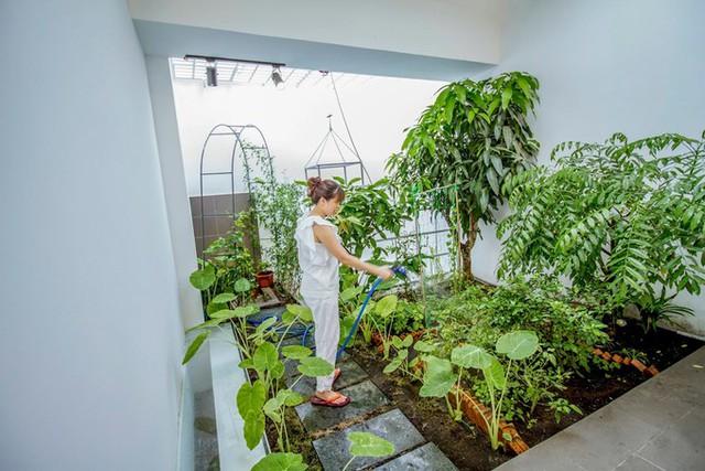 Khu vườn trên sân thượng có nhiều loại cây hay trồng ở quê, đem lại những bữa cơm thanh mát với rau củ nhà tự trồng.