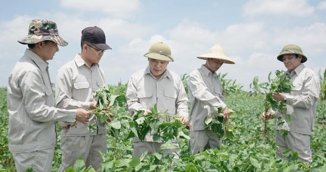 Viện Di truyền Nông nghiệp nghiên cứu và chuyển giao giống đậu nành dược liệu cho công ty Nam Dược