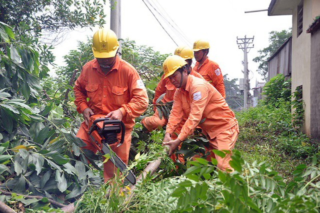 Phát quang hành lang bảo vệ an toàn công trình lưới điện cao áp. Ảnh: Hoa Việt Cường