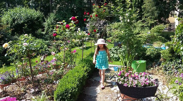Khu vườn đầy hoa và nắng.