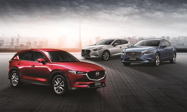 Mazda sở hữu 5 dòng xe trải đều các phân khúc từ B, C, D, CUV, Pick-up, mỗi dòng xe có từ hai đến ba lựa chọn phiên bản kiểu dáng, động cơ.