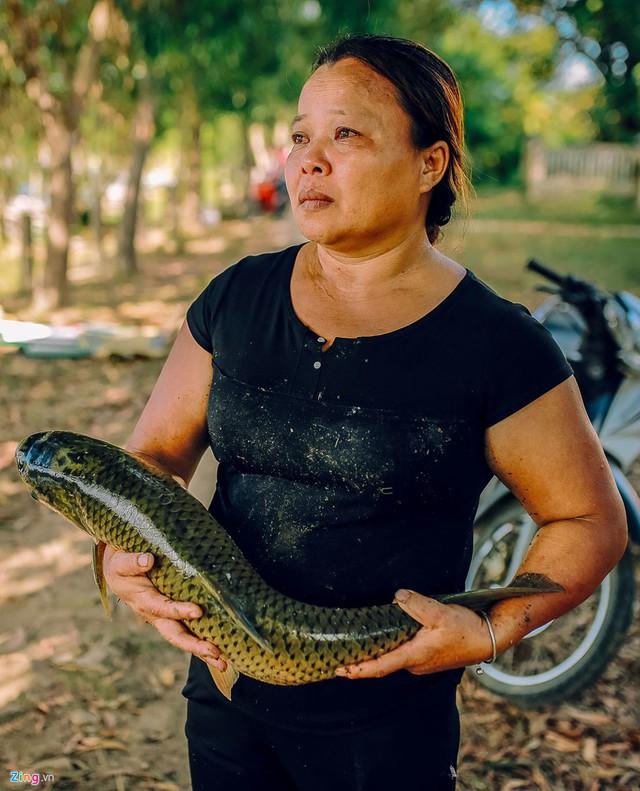 Nước mắt của chị Nguyễn Thị Ty khi ôm con cá đã chết trên tay. Đợt này thiệt hại của gia đình chị lên đến trăm triệu đồng, cả gia đình mất ngủ.
