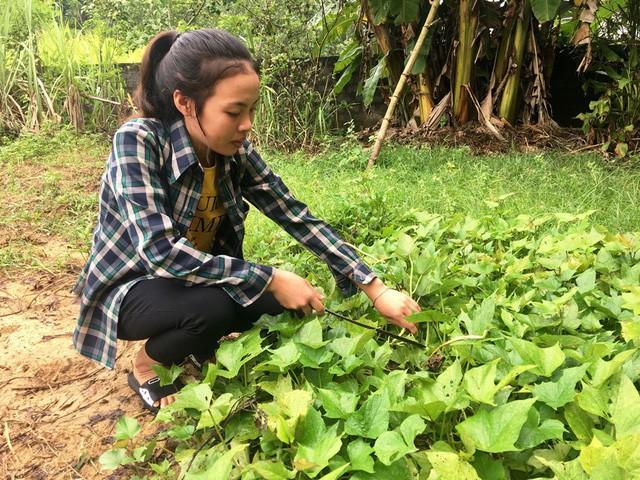 Chăm học, nhưng Hằng rất siêng năng công việc đồng áng, chăn nuôi và phụ giúp bố mẹ.